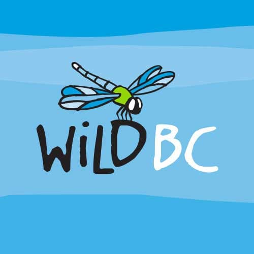 CBEEN Workshops - WildBC