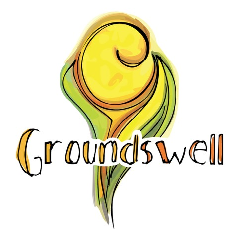 Groundswell Network Society (GNS)